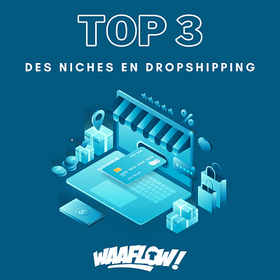 top 3 des meilleures niches en dropshipping